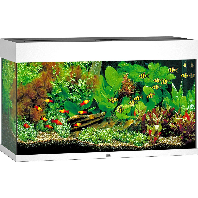 Juwel Aquarium Rio LED Weiß 125 l