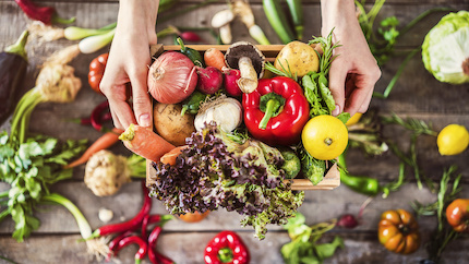 Lebensmittelkauf auf Raten